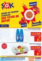 ŞOK Market 23 Haziran Kataloğu - Blendax Şampuan Çeşitleri